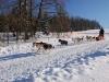 sedivacek-2011-sobota-061-500x332
